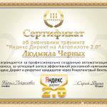 Мой сертификат Яндекс 2.0